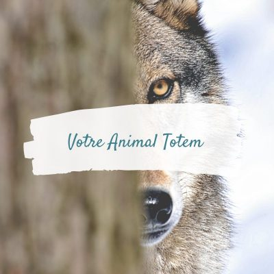 Animal Totem | Chamane Urbaine