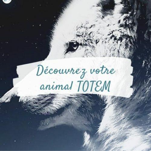 Quel est mon animal Totem | Voyage Chamanique | Chamane Urbaine