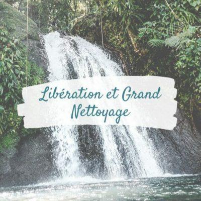 Libération émotionnelle et Nettoyage énergétique | Voyage Chamanique | Chamane Urbaine
